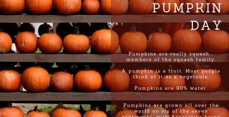 National Pumpkin Day